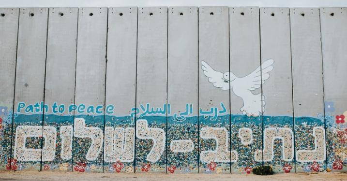 Peace graffiti with dove