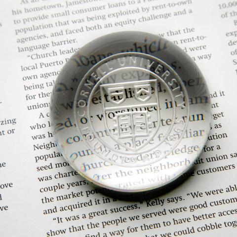 Cornell Seal Paperweight